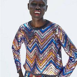 Zara Chevron Sequin Sweater